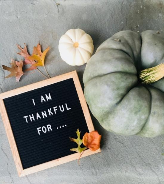 Rachel and Company - Thanksgiving - www.rachel-company.com