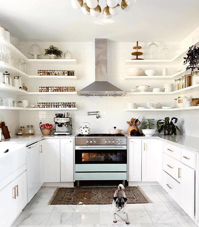 This open shelving has me swooning—though the puppy doesn't hurt, either. 🐾 Kitchen dream-come-true courtesy of @amberulmer⠀