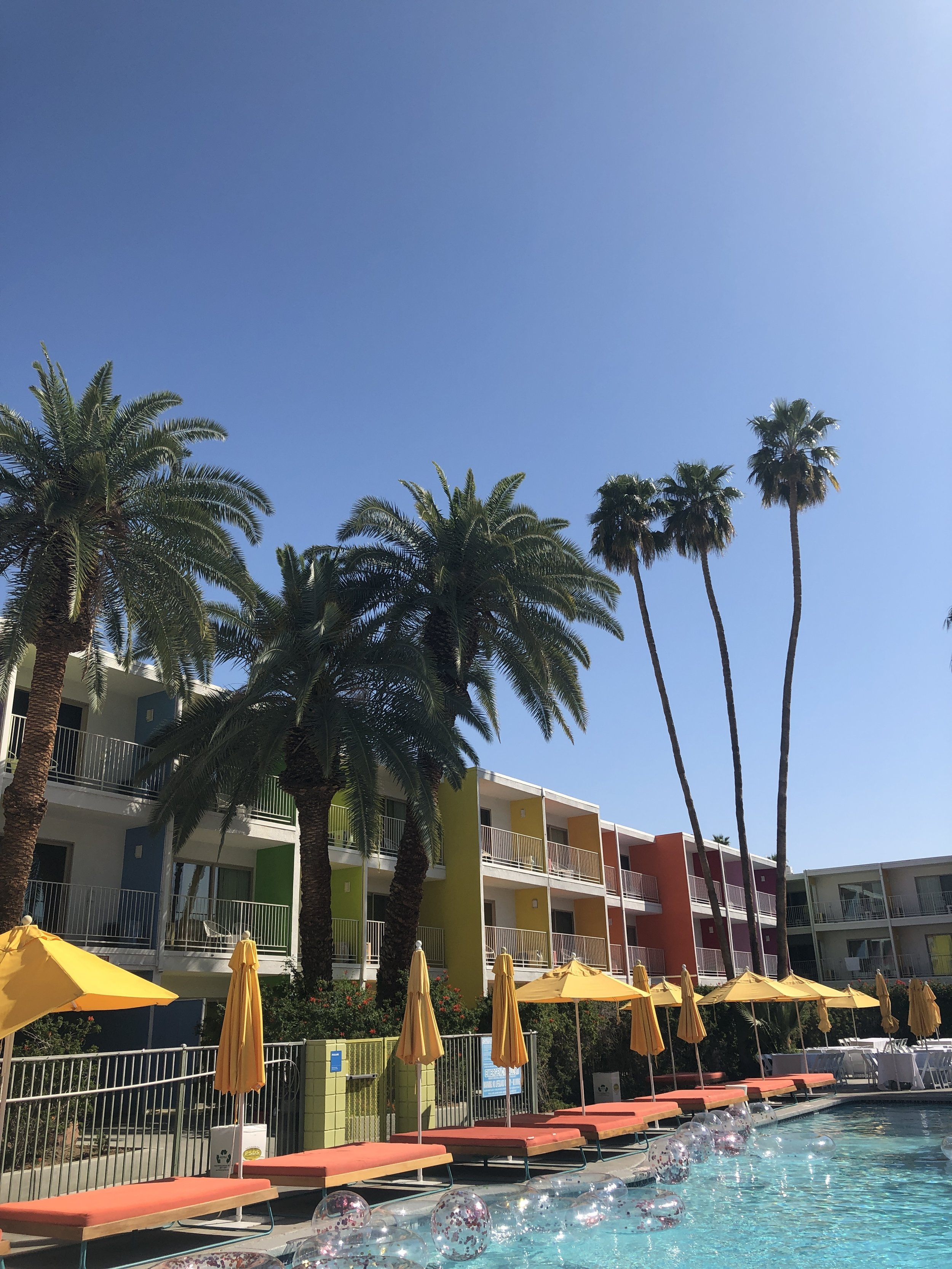 Even the hotels are rainbow colored in beautiful Palm Springs!