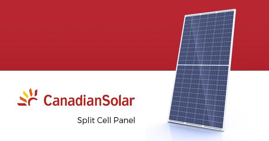 canadian-split cell.jpg