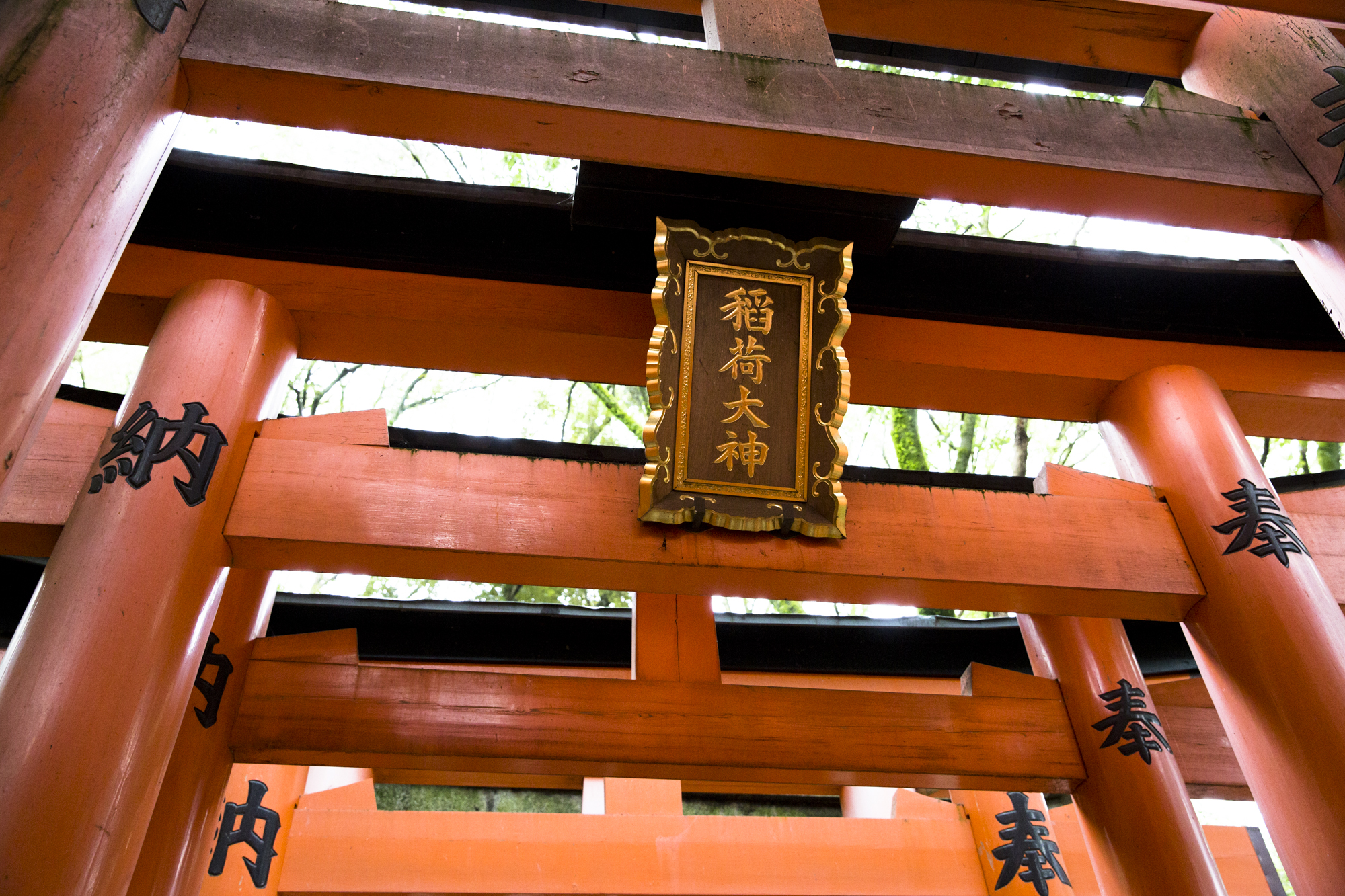 PERRU_P_JAPAN_01_38.jpg