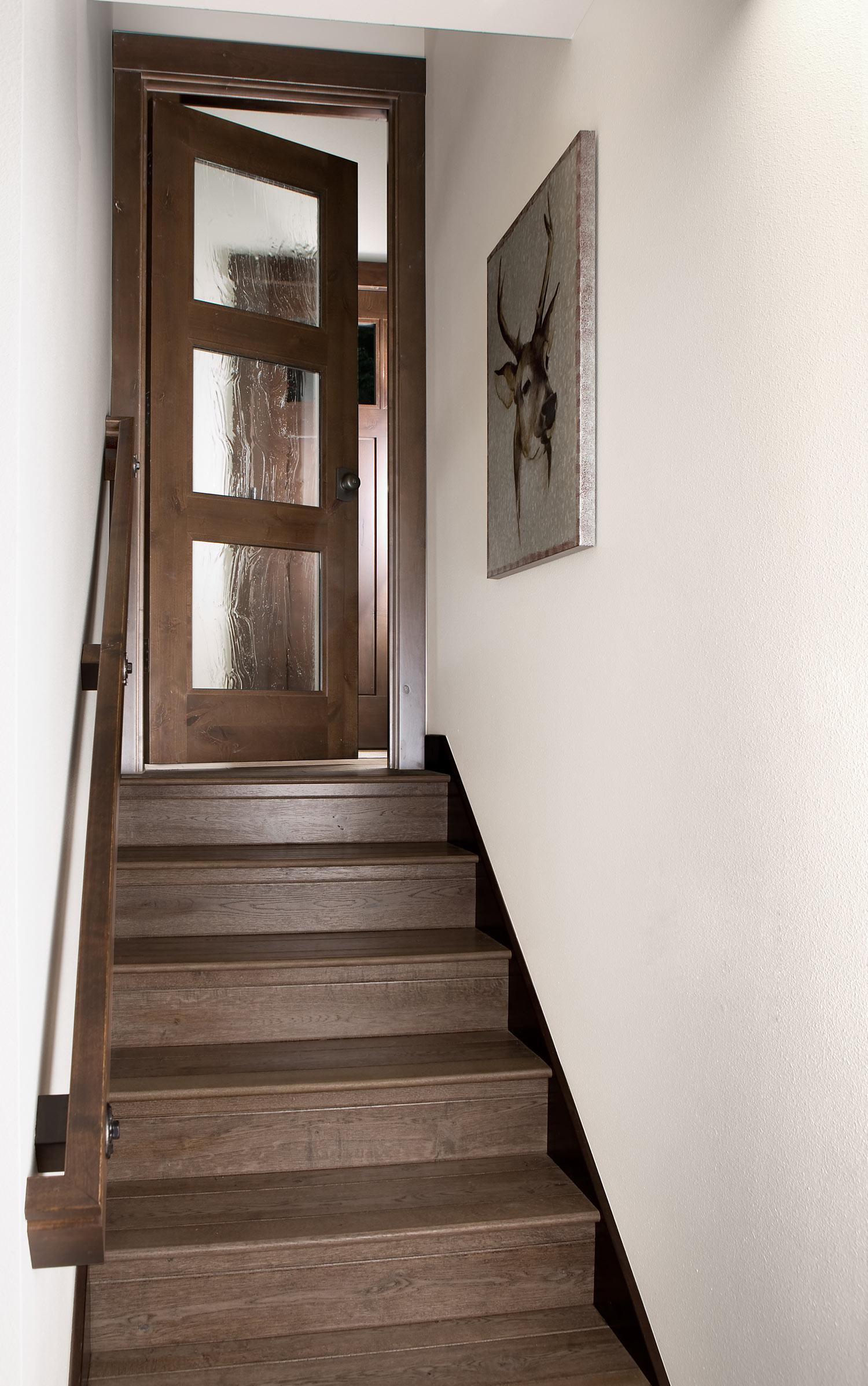 Stair-Door-1-sfw.jpg