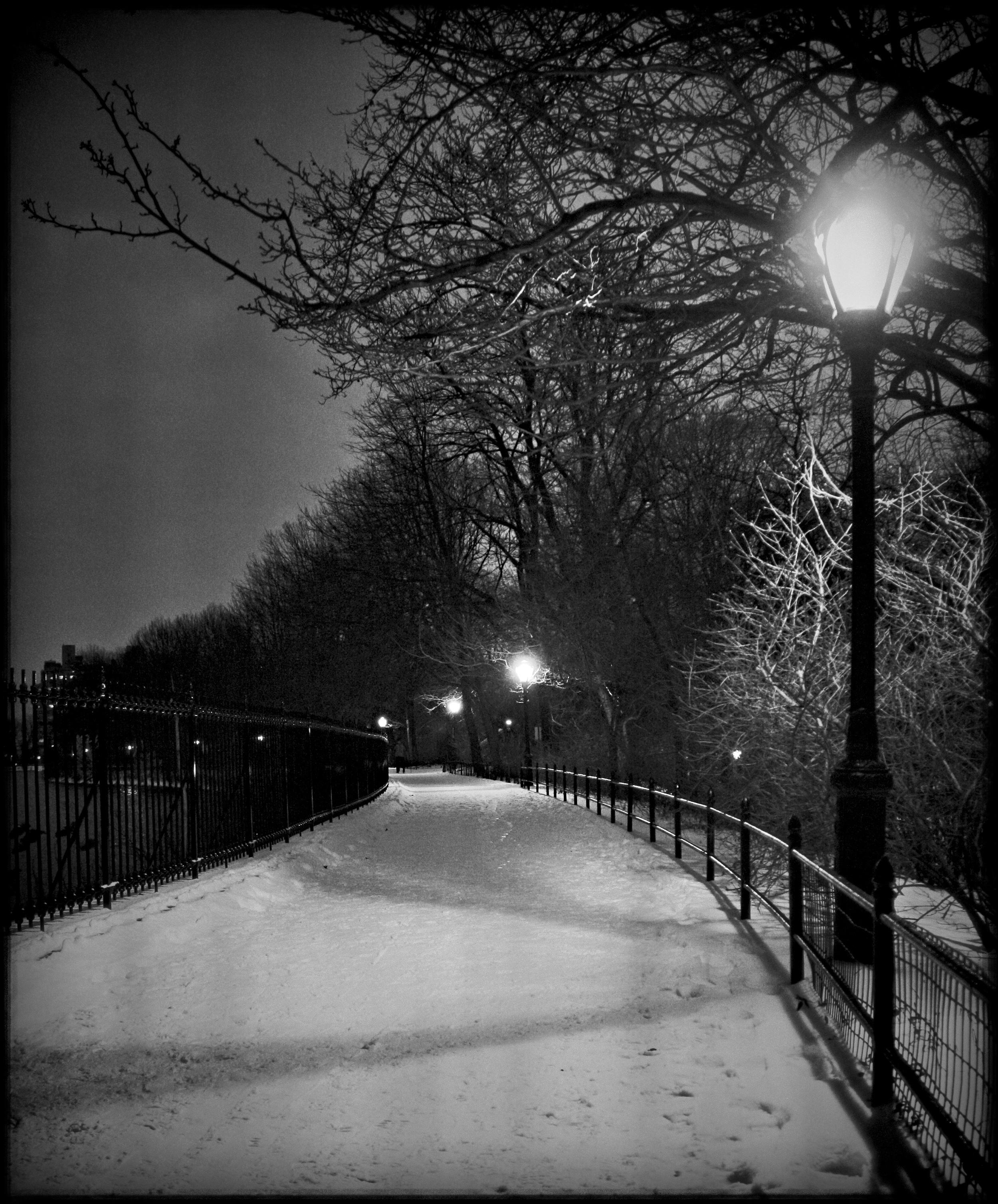 snow3.1.jpg