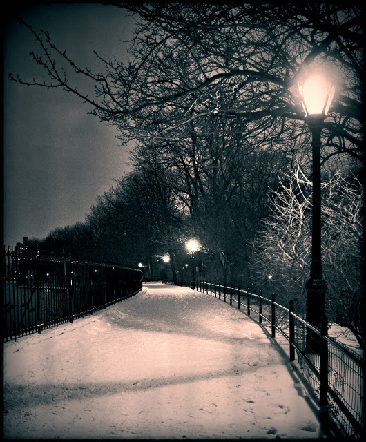 Central Park  after the First Snow of 2012