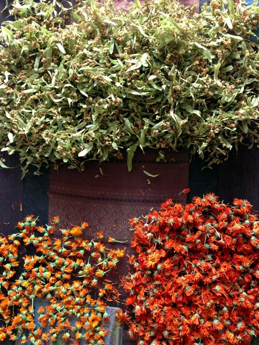 Calendula and Linden Blossoms drying on a screen