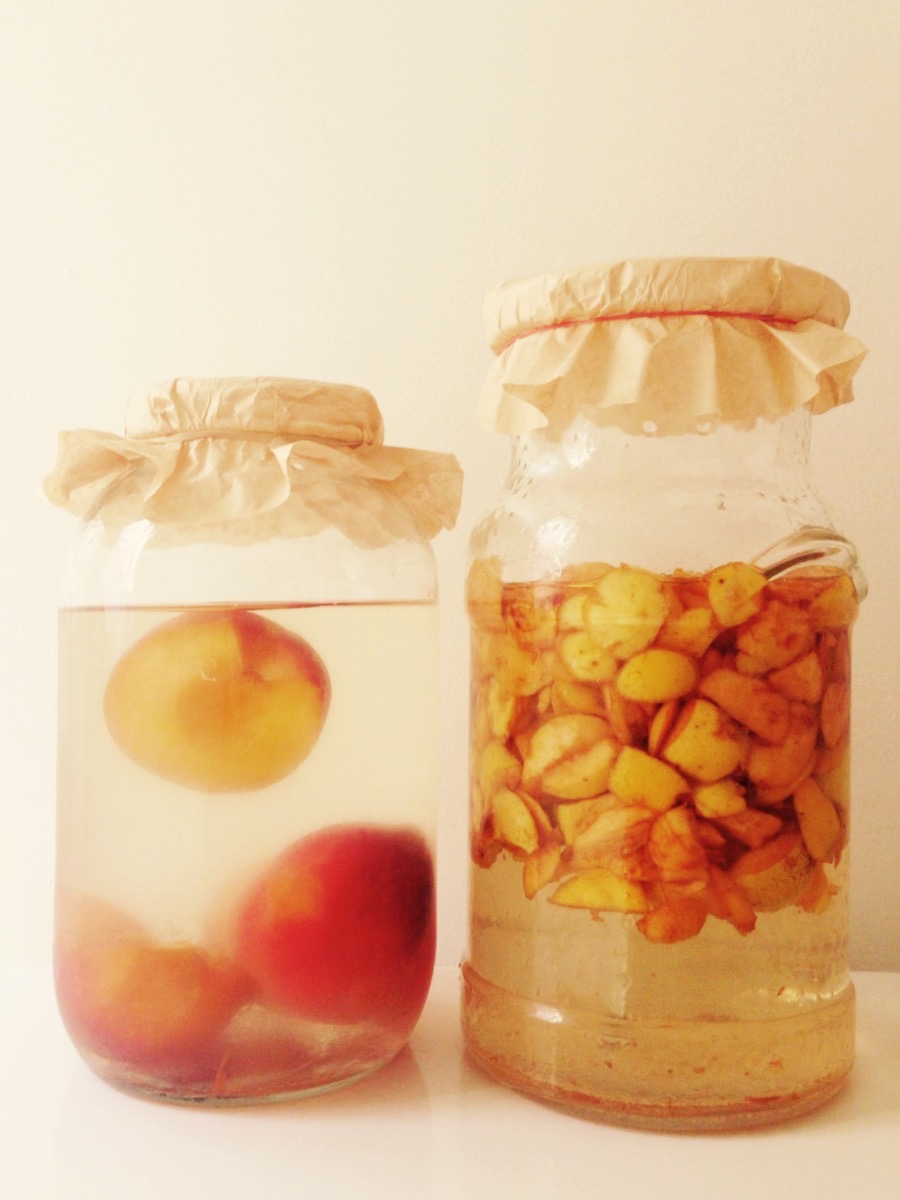 Day 1 - Overripe peaches on the left and apple scraps on the right - note that the water has little colour