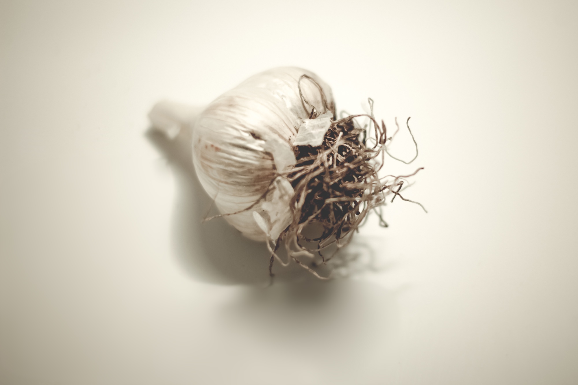 The Miracles of Garlic and a Recipe for Fermented Garlic