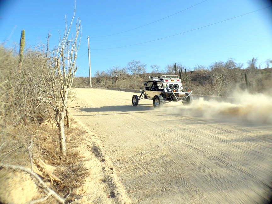 Trail - buggy- (12 of 48).jpg
