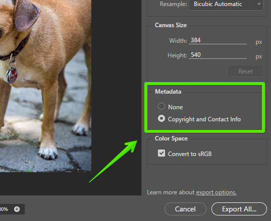 You can select what metadata to include with each asset.