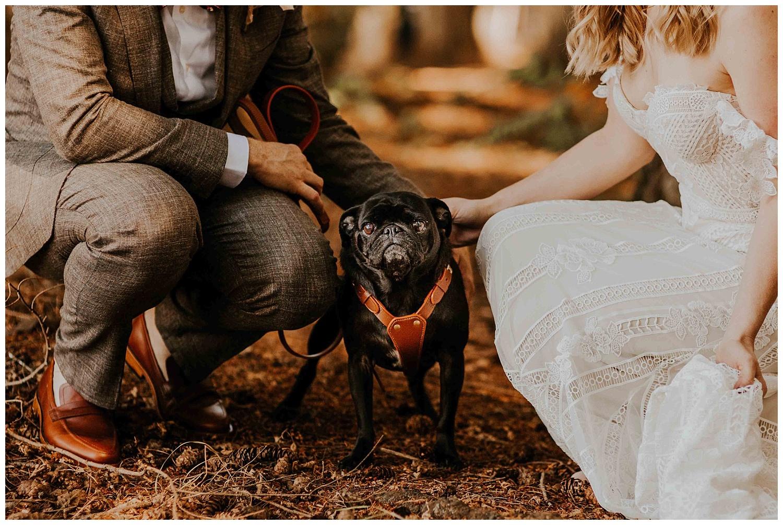 Ashley Peter Kitsap State Park Pouslbo Washington Outdoor DIY Wedding (23).jpg