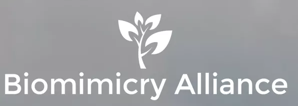 European-Biomimicry-Alliance.png