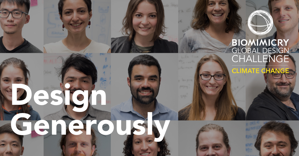 Biomimicry Global Design Challenge Finalists 2018