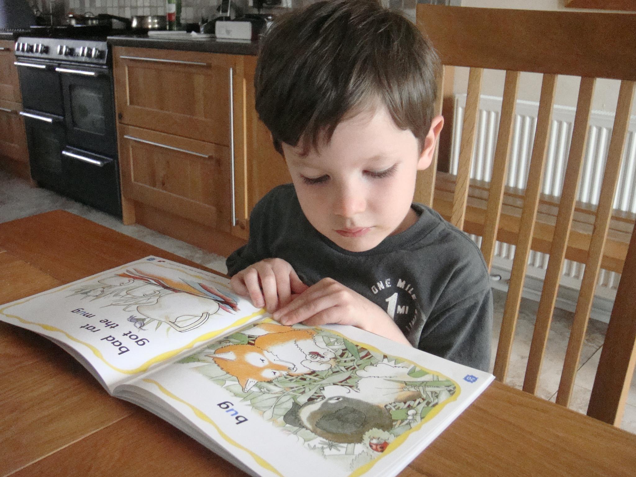 Ollie reading