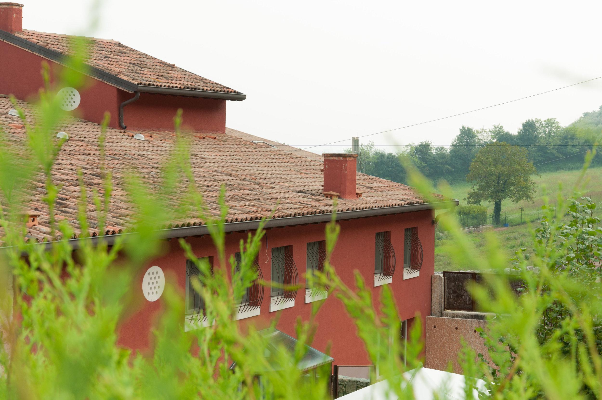 Colle-degli-Ulivi-4.jpg