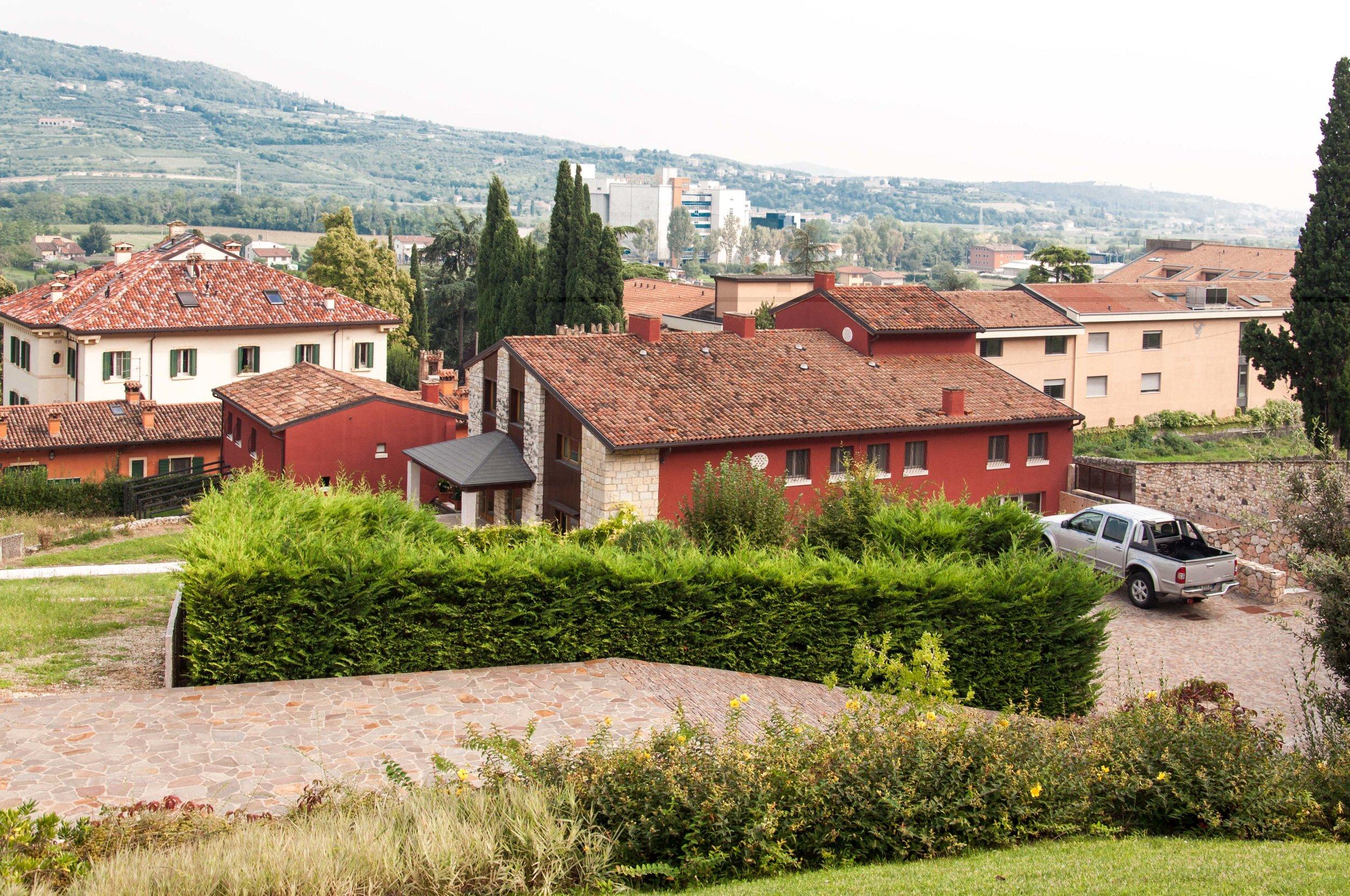 Colle-degli-Ulivi-5.jpg
