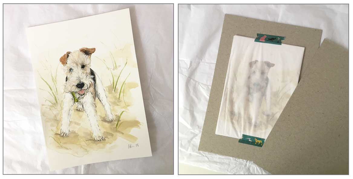 pet portrait packaging double copy.jpg