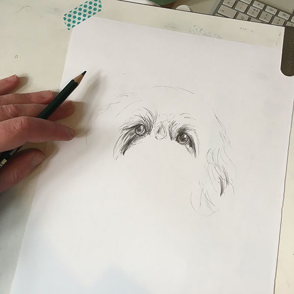 pencil pet portrait 1.jpg