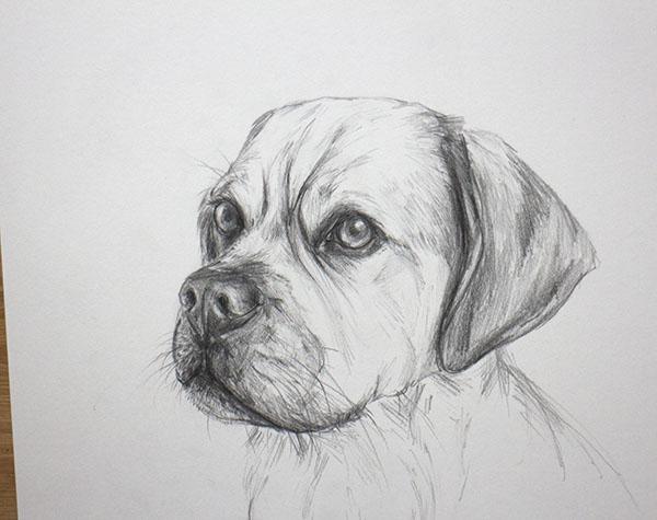 Baxter.