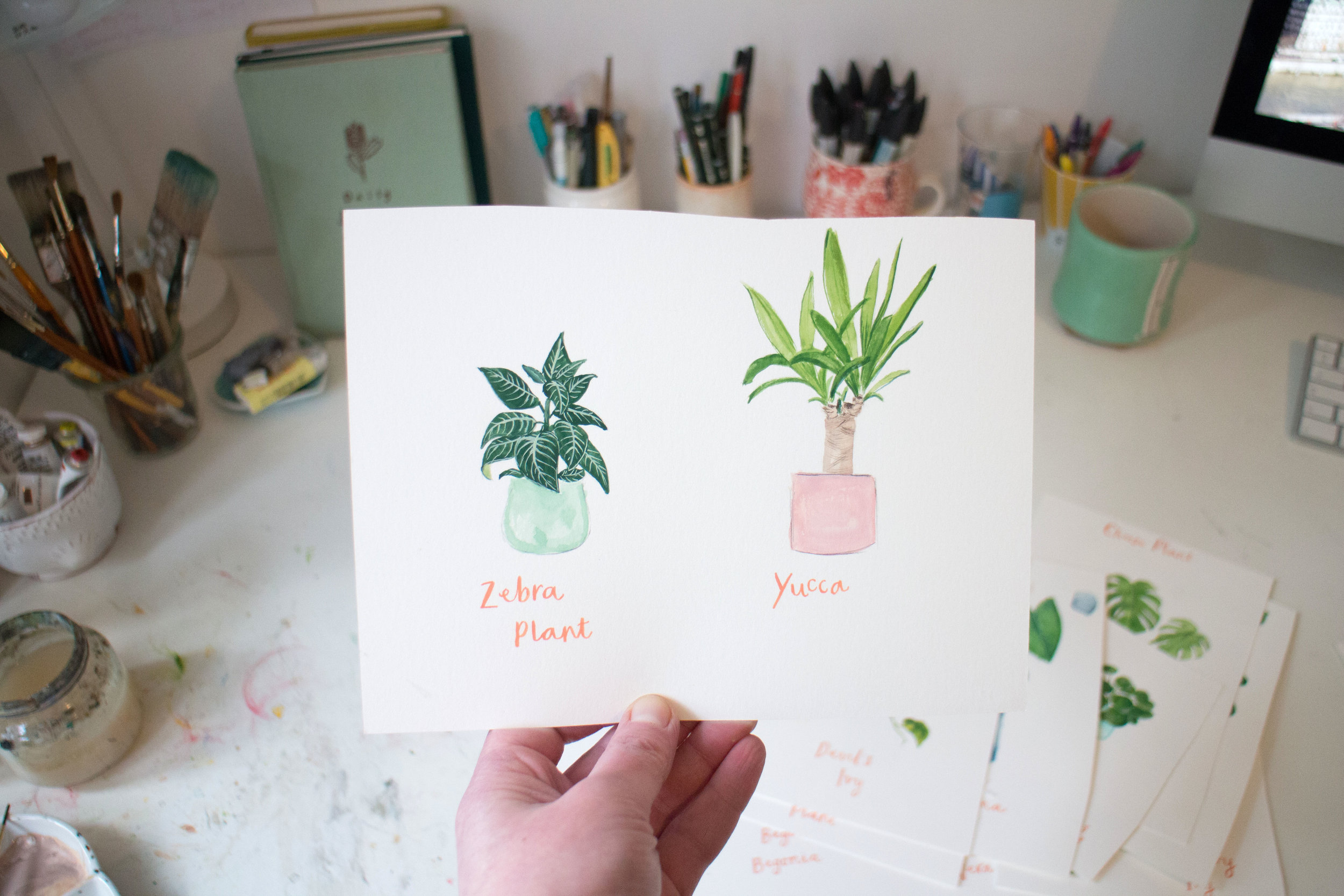I love how these two look together on the paper. I like to work quite methodically, so these were the last two I painted (doing the Yucca first on the right because I'm left-handed).