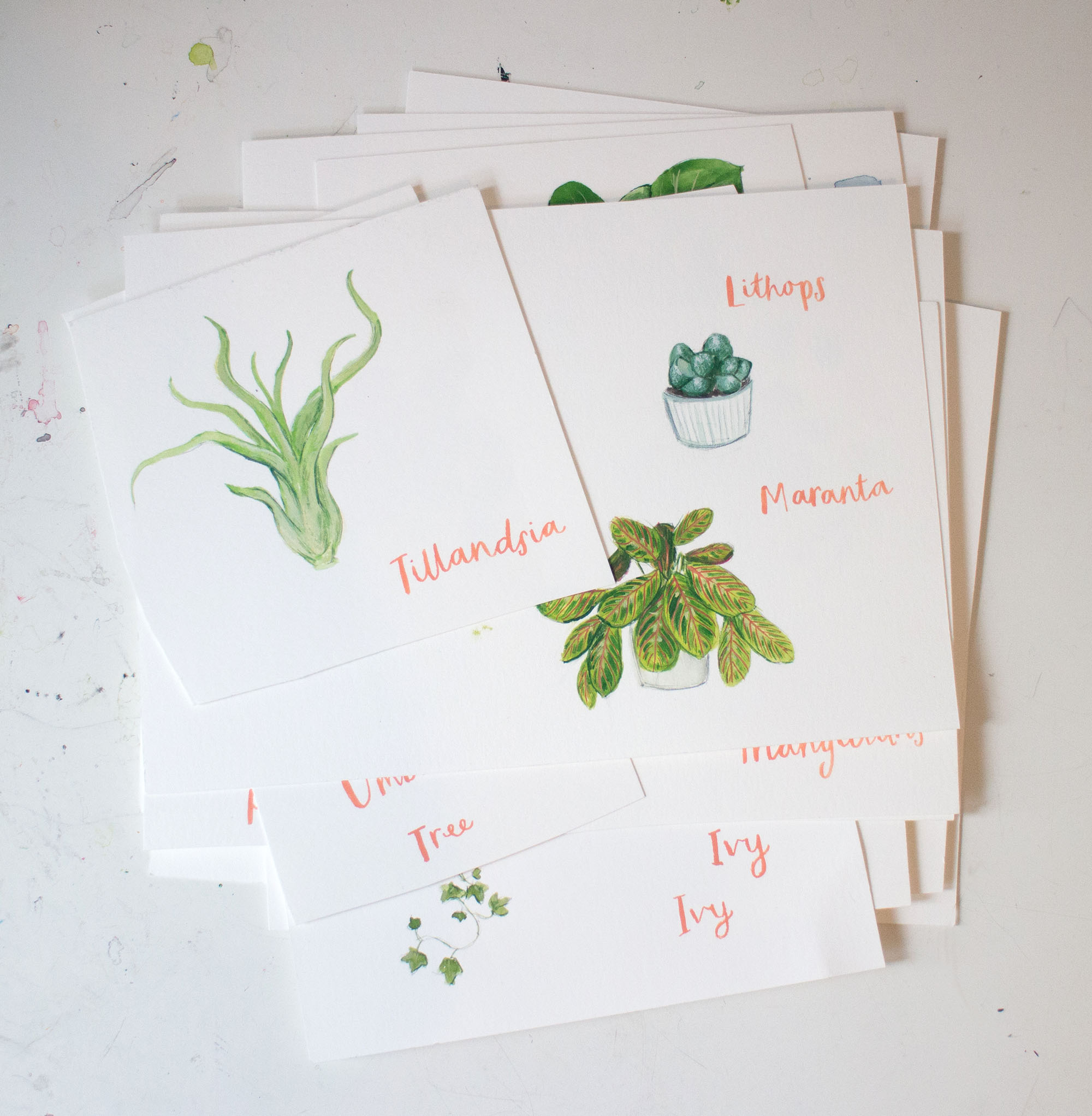 plant paintings pile