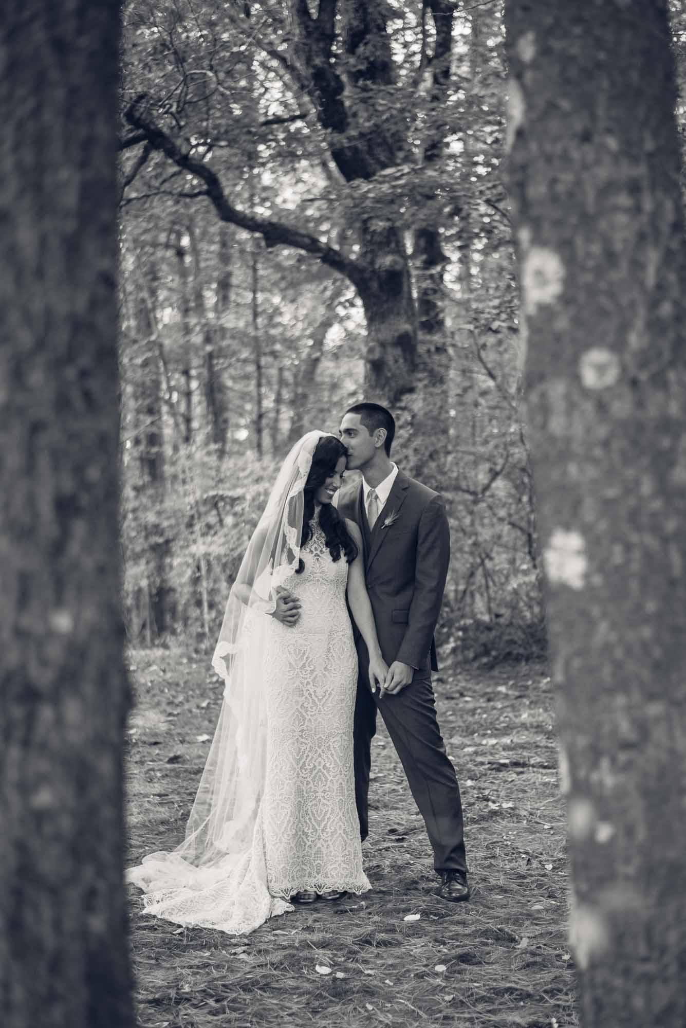 n+s-mansion-at-bald-hill-wedding-2017-48.jpg