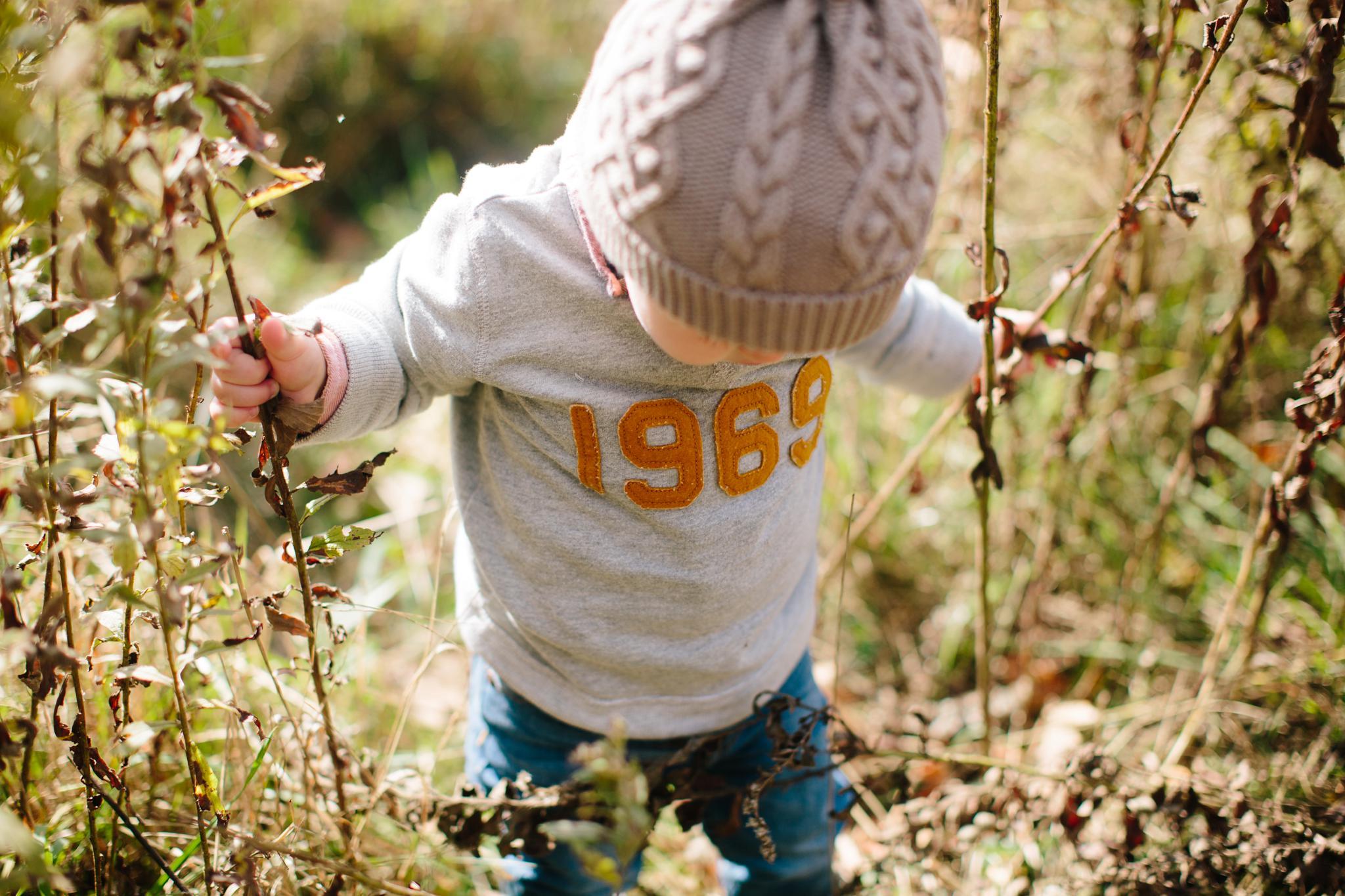 finley_eighteen_month_photos_4659.jpg