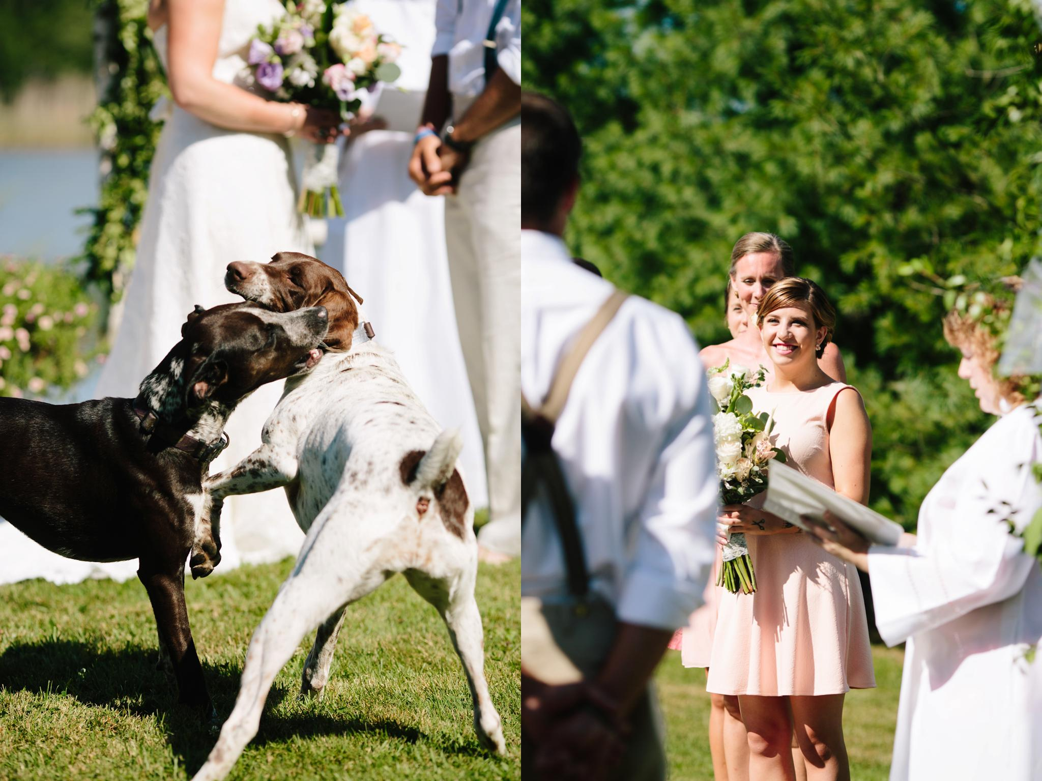 TUNKHANNOCK_PA_WEDDING_PHOTOGRAPHER_YOUNG_WEDDING_3121.jpg