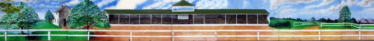 Horse Racing Grandstand:  Grandstand- Fields- Buildings- Fencing- Scene that measures 8' tall and up to 140 feet wide. If you need to cover a huge area, this one is for you. There are no horses on this scene so you can stretch your imagination and use it for other themes as well. foamcore.