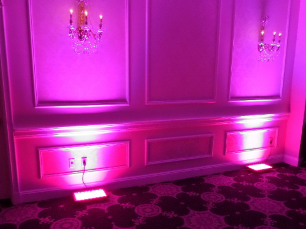 Wall Wash Lighting: Proper lighting is an essential element of any event. Lights can either stay the same color all night long or change with the mood and tempo of the event.