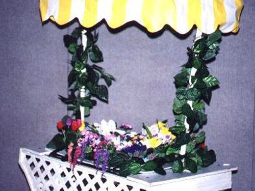 Flower Cart: Plastic lattice, wheels and umbrella. whatever you want to put inside- not included.