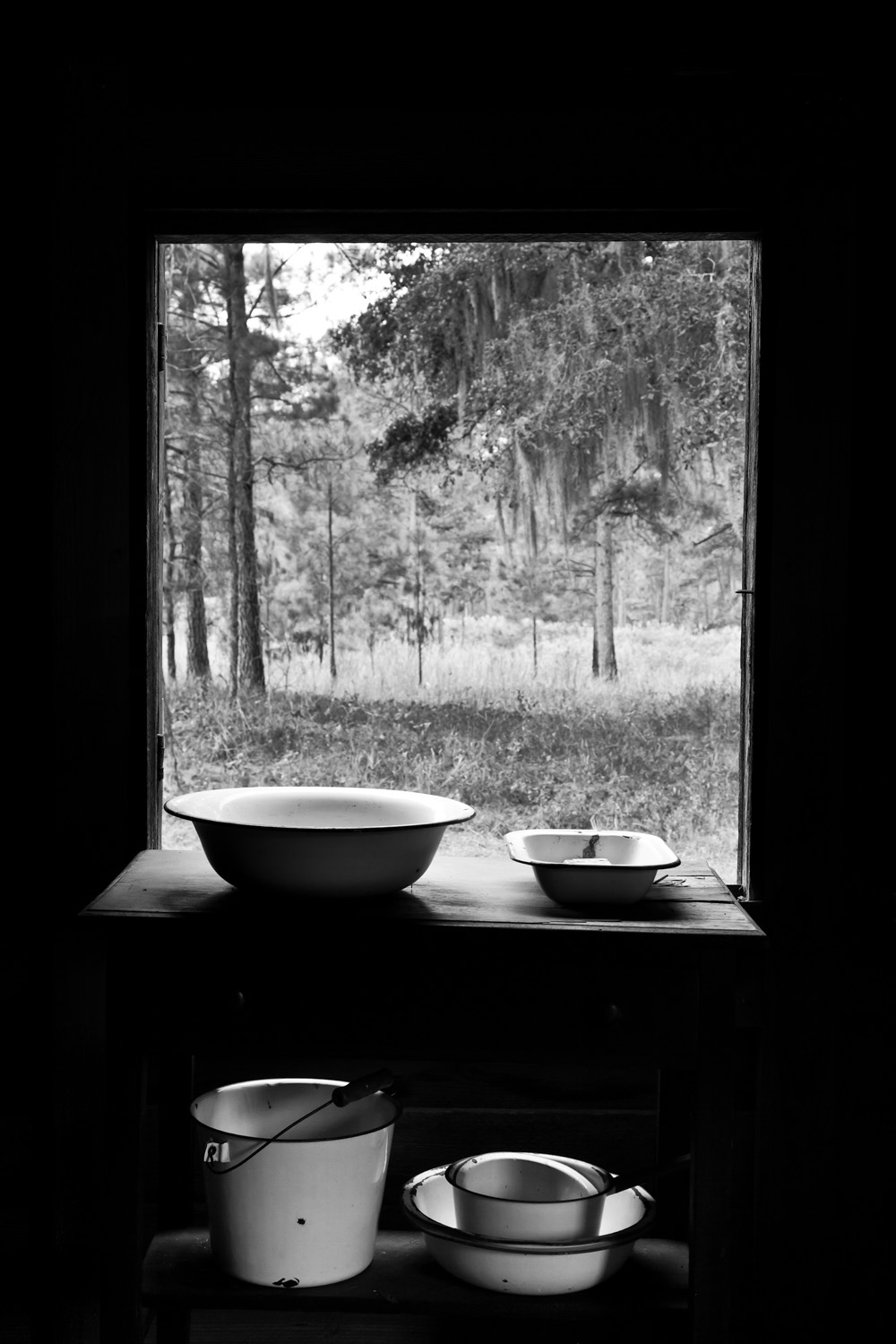 View From Kitchen Window, 2010
