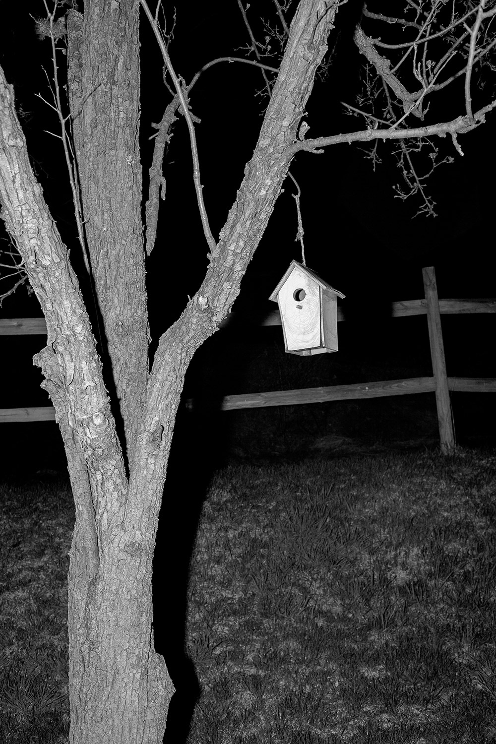 Bird House. Julian, PA   Archival fiber inkjet print  20 x 30 inches