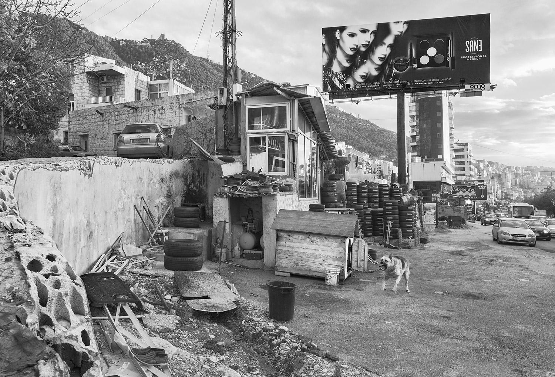 Untitled (Dog).  Beirut, Lebanon, 2018  Archival Fiber Inkjet Print   16 x 24 inches