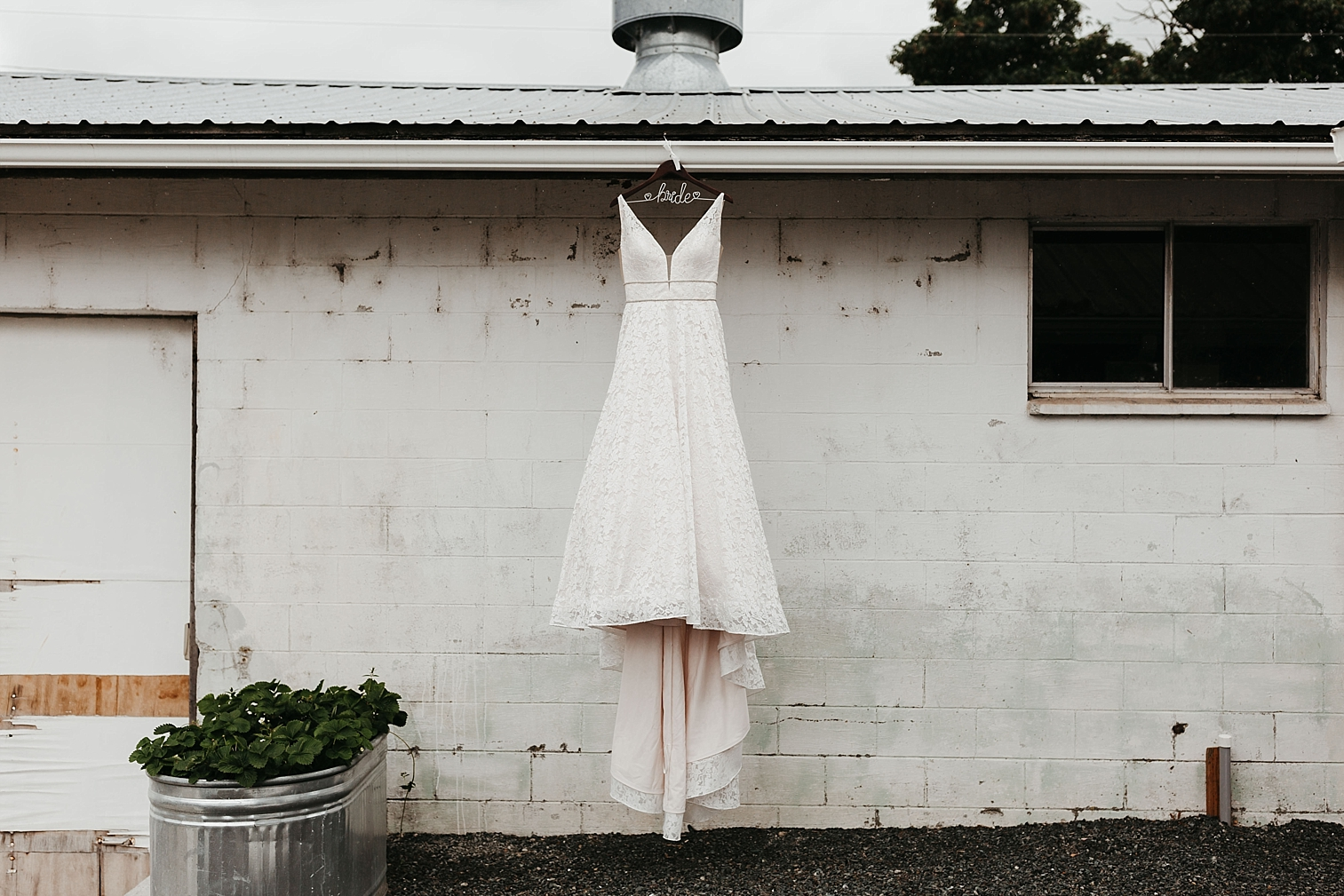 Dairyland-Wedding_0000.jpg