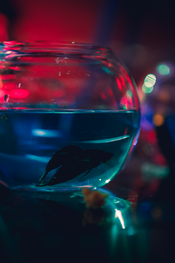 LYON-Floating-Video-Behind-The-Scenes-Photos-9028.jpg
