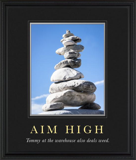 8. aim high.jpg