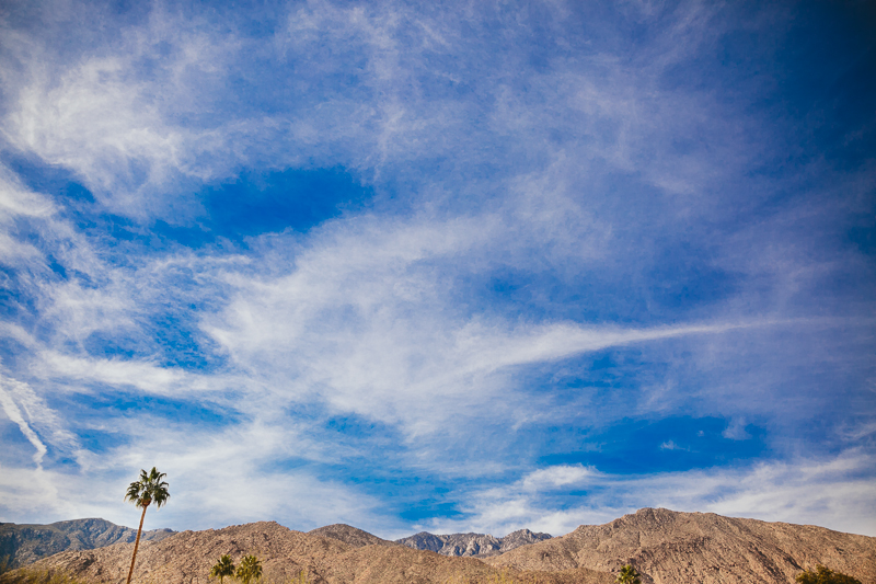 epic_ace_hotel_palm_springs_wedding_diamond_eyes_photography_0001.jpg