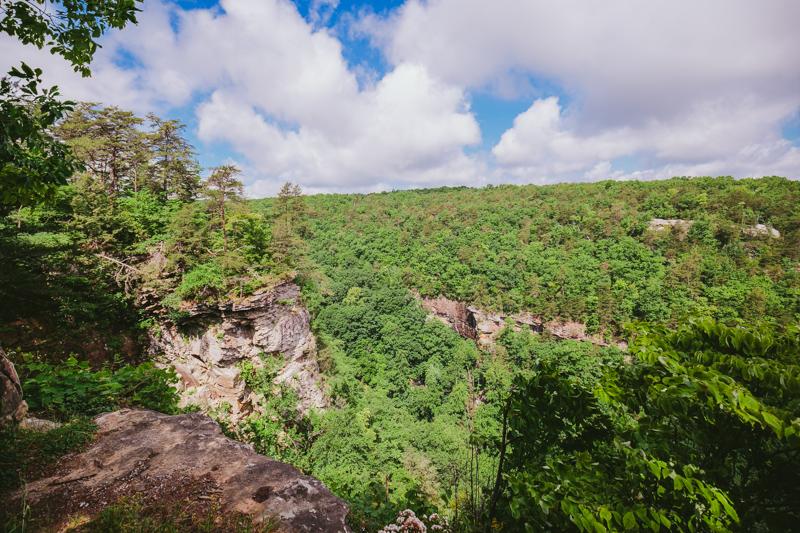 vegan_hiking_wedding_cloudland_canyon__045.jpg