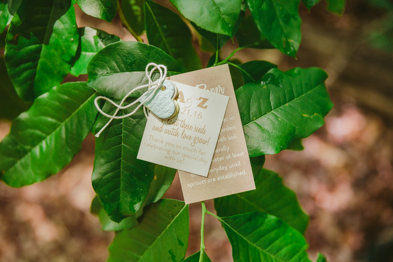 vegan_hiking_wedding_cloudland_canyon__059.jpg