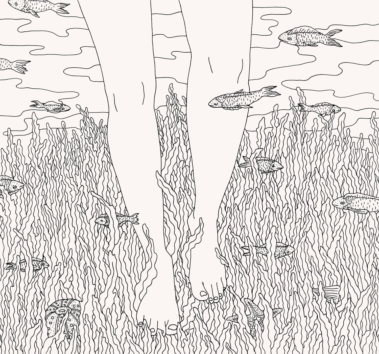 seaweed_tint.jpg