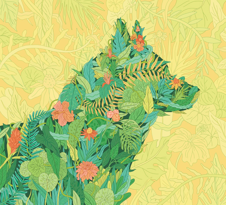 Green-Pets-Opener-02.jpg