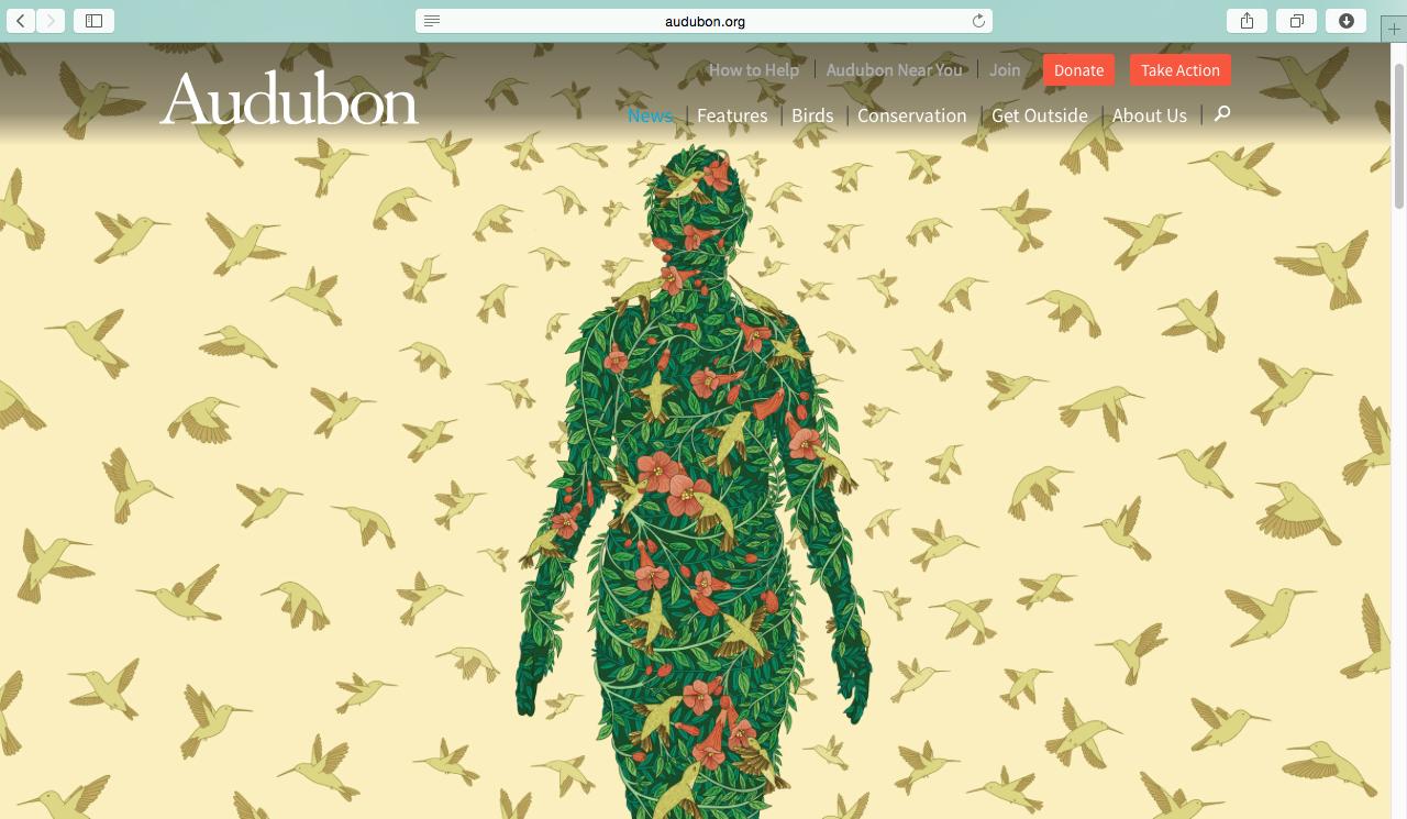 Audubon-Magazine-03.png