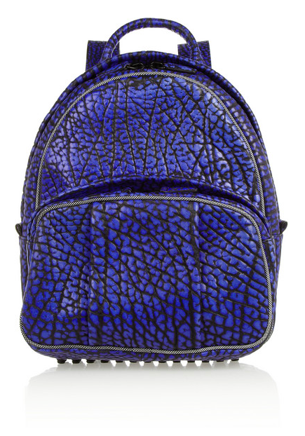 Alexander Wang Dumbo Textured Leather Backpack , $717 (40% off at Net-A-Porter)