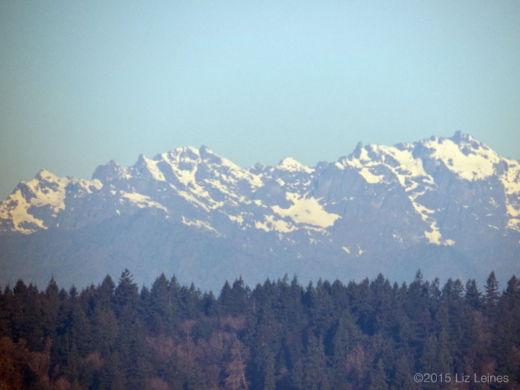 The Olympic Mountains looking very bare with little snow for winter.