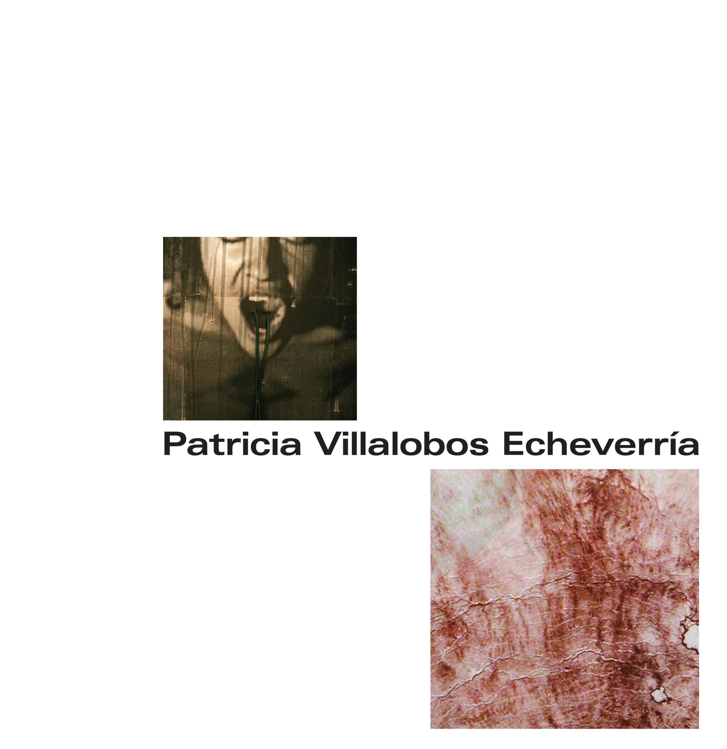 Patricia Villalobos Echeverria Catalogue sample-1.jpg