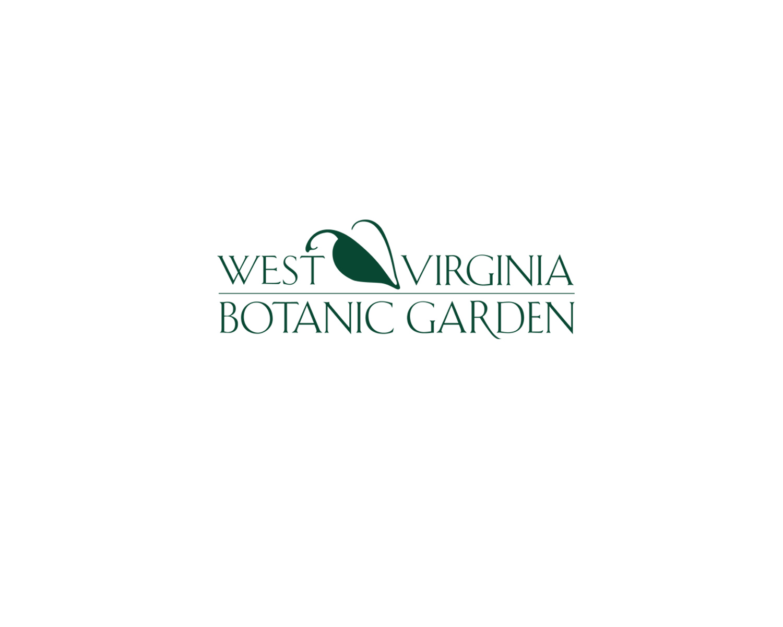 WVBG logo 2.jpg