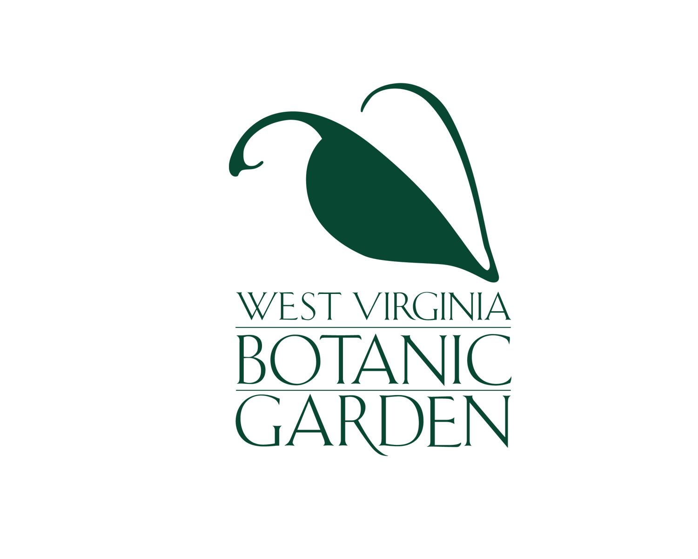WVBG logo 3.jpg
