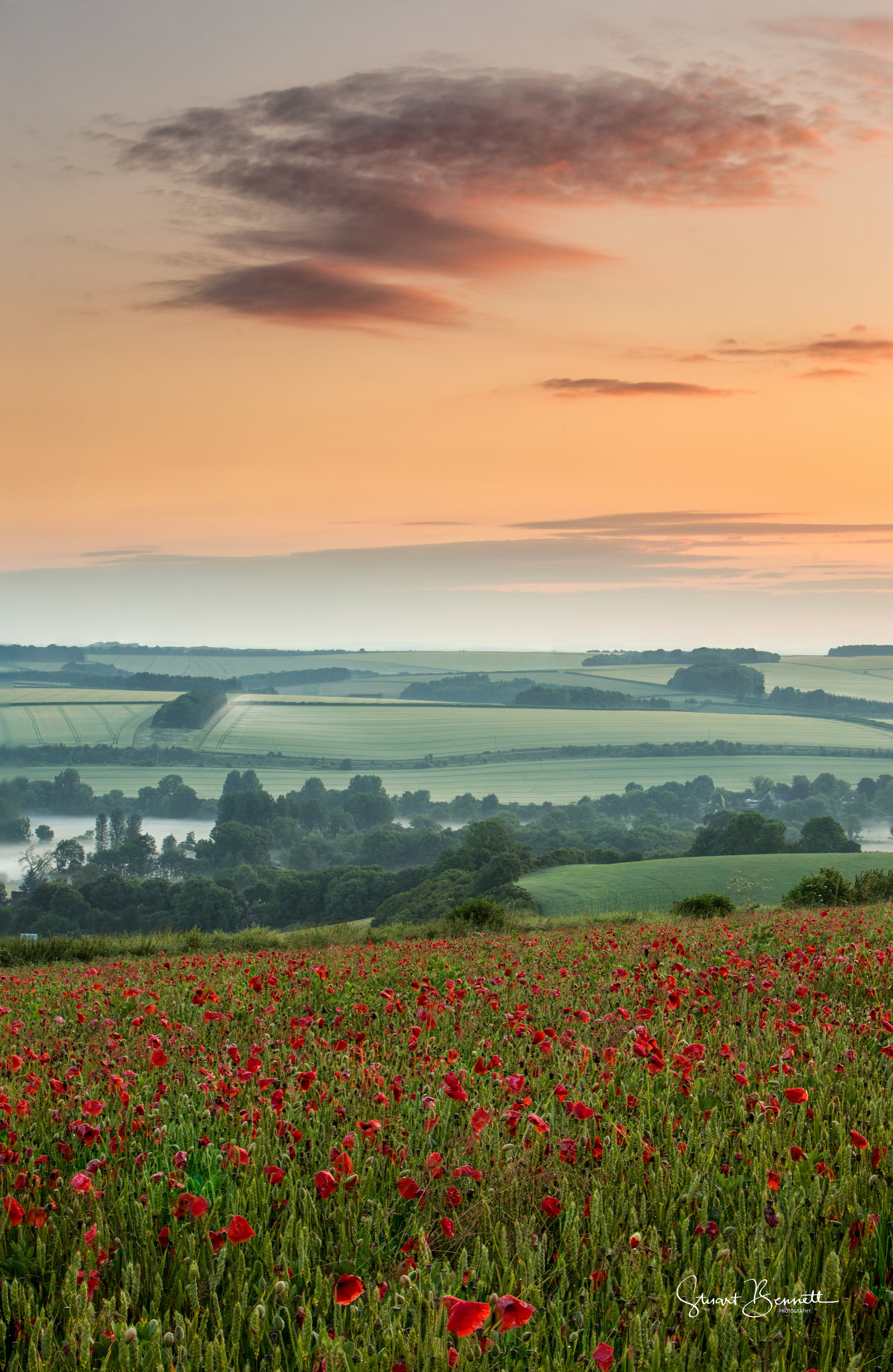 20160626-Poppy Field Sunrise I.JPG