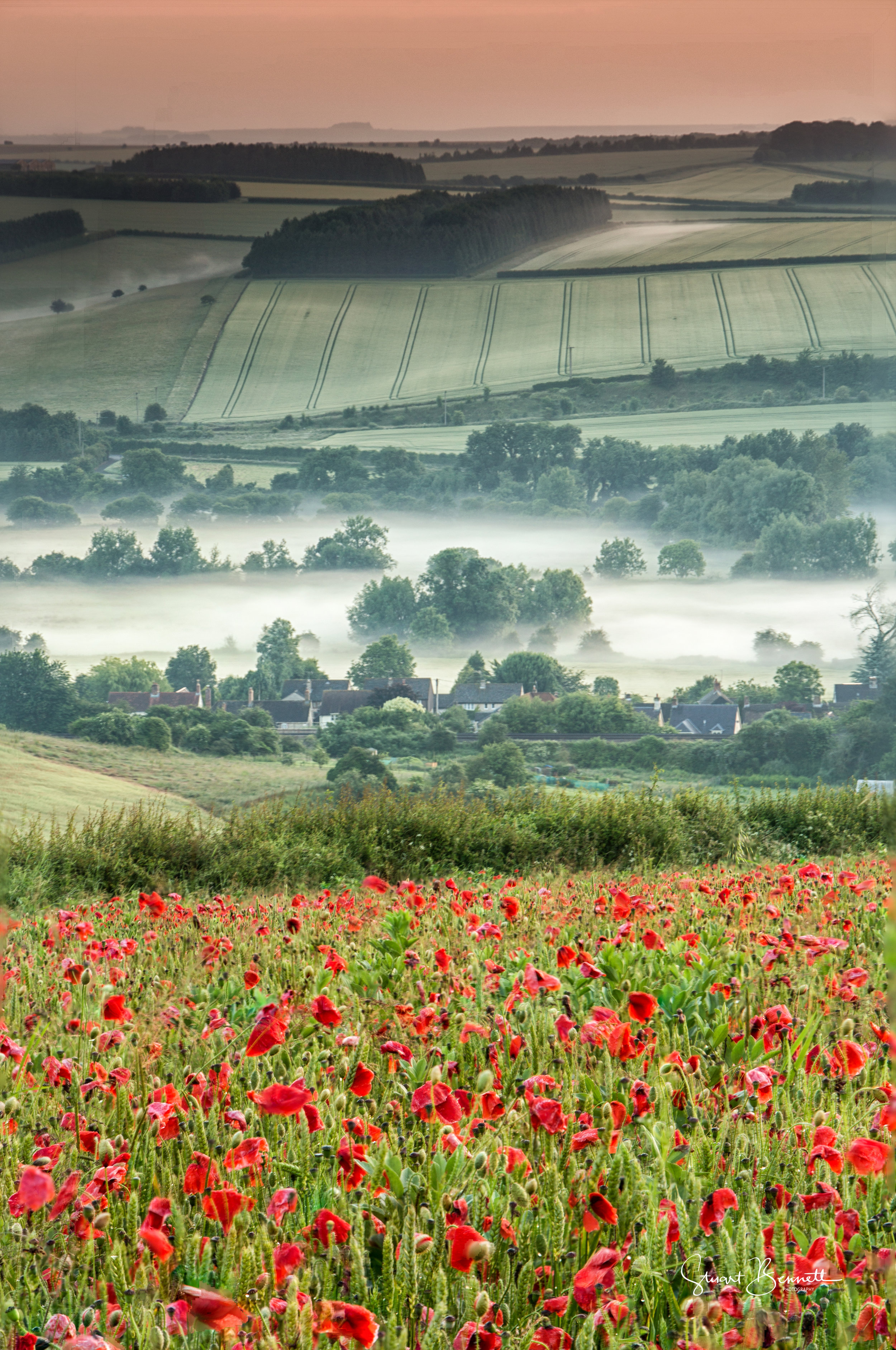 20160626-Poppy Field Sunrise II.JPG