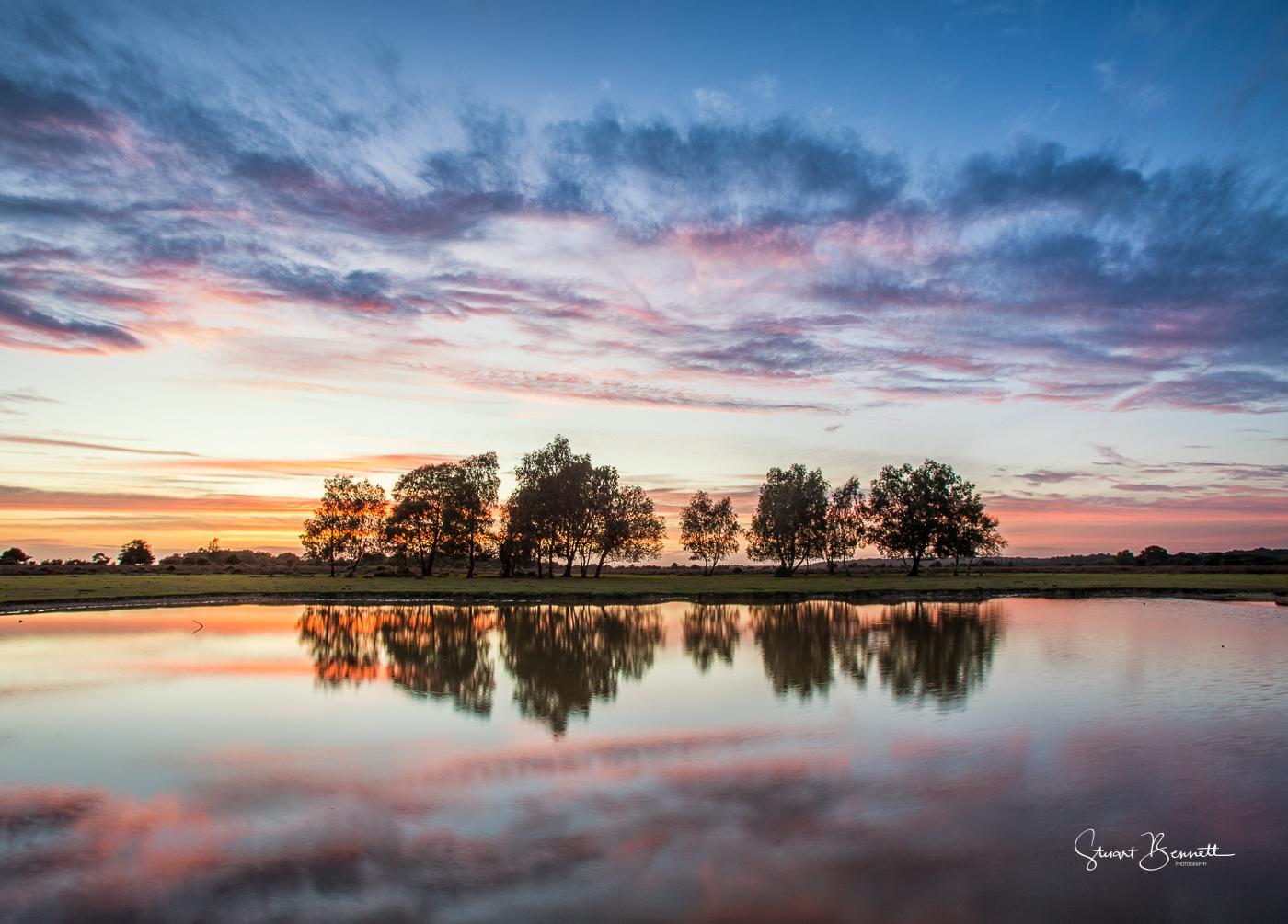 Fritham Sunset.JPG